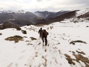 entre neige et montagne
