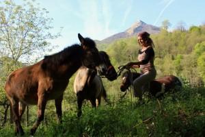 isa-poneys-cagire_2