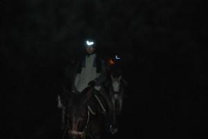 dans la nuit tous les cavaliers sont gris!