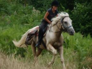 le bonheur est à cheval